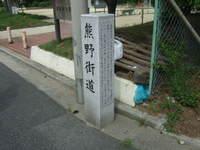 2007_0602049