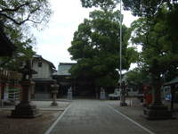 2007_0602054