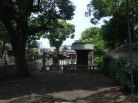 2007_0602074